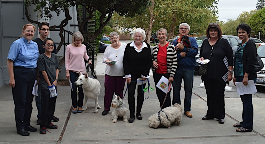 Blessing of the Animals at St. Andrew's Church, San Mateo